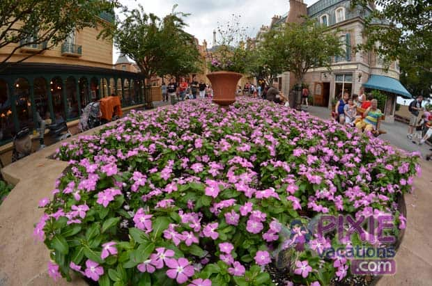 epcot france dining review