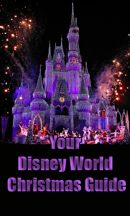 Disney World Holiday party Christmas Guide
