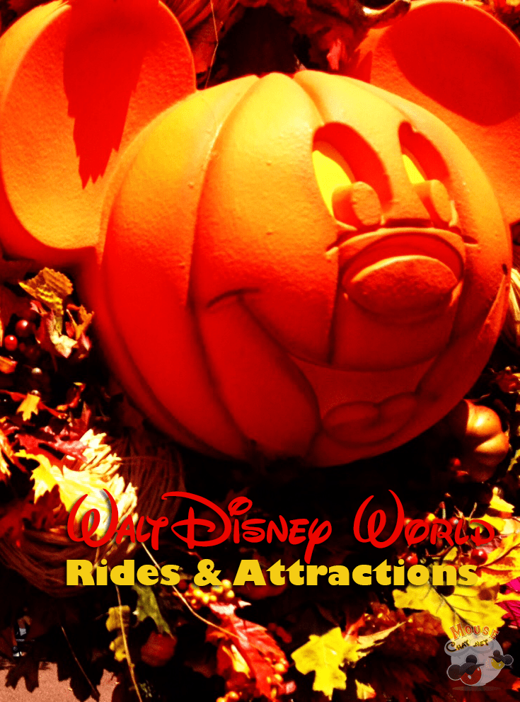Our favorite ride experiences at Walt Disney World  #WaltDisneyWorld #DisneyWorld
