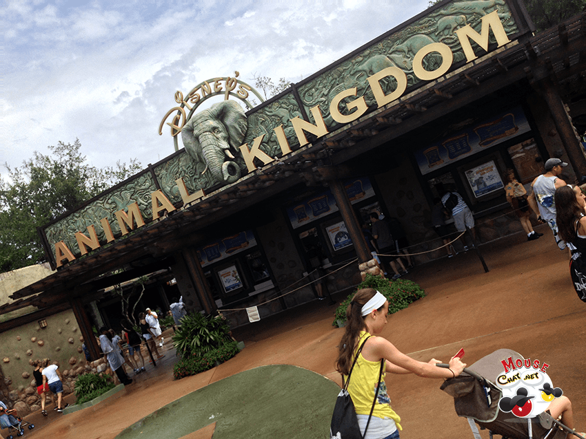 disney-animal-kingdom-fastpass