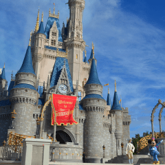 Walt Disney World Vacation Questions