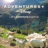 Adventures by Disney through real life stories