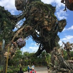 Our Full Disney World Pandora Review