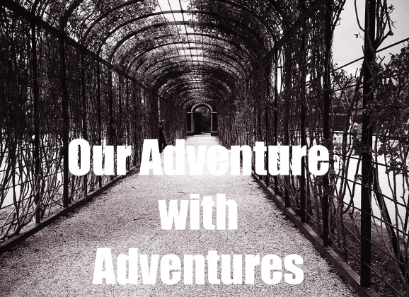 Why You Should Adventure on Adventures by Disney