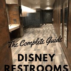 Disney World Bathrooms Reviewed, Ummm Yeah