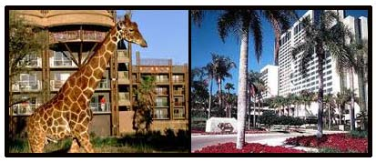 Disney World - Staying on property vs. off property