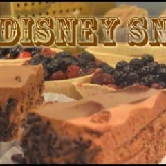 Disney World Best Snacks