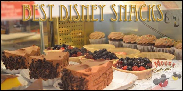 Disney World Best Snacks
