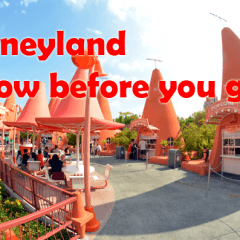 First Time to Disneyland? Make sure you don't miss these tips