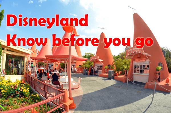 Disneyland Must See