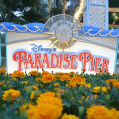 Disneyland Hotel Reviews