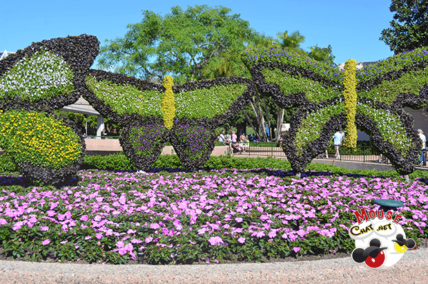 Disney World Flower and Garden Festival Mouse Chat