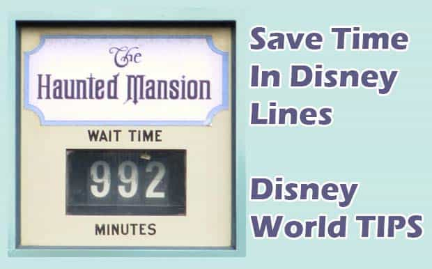 Disney World Ride wait times