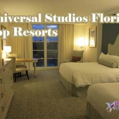 Universal Studios Florida Best Tips to Save