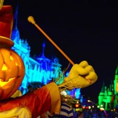 Here's what not to miss at Disney World
