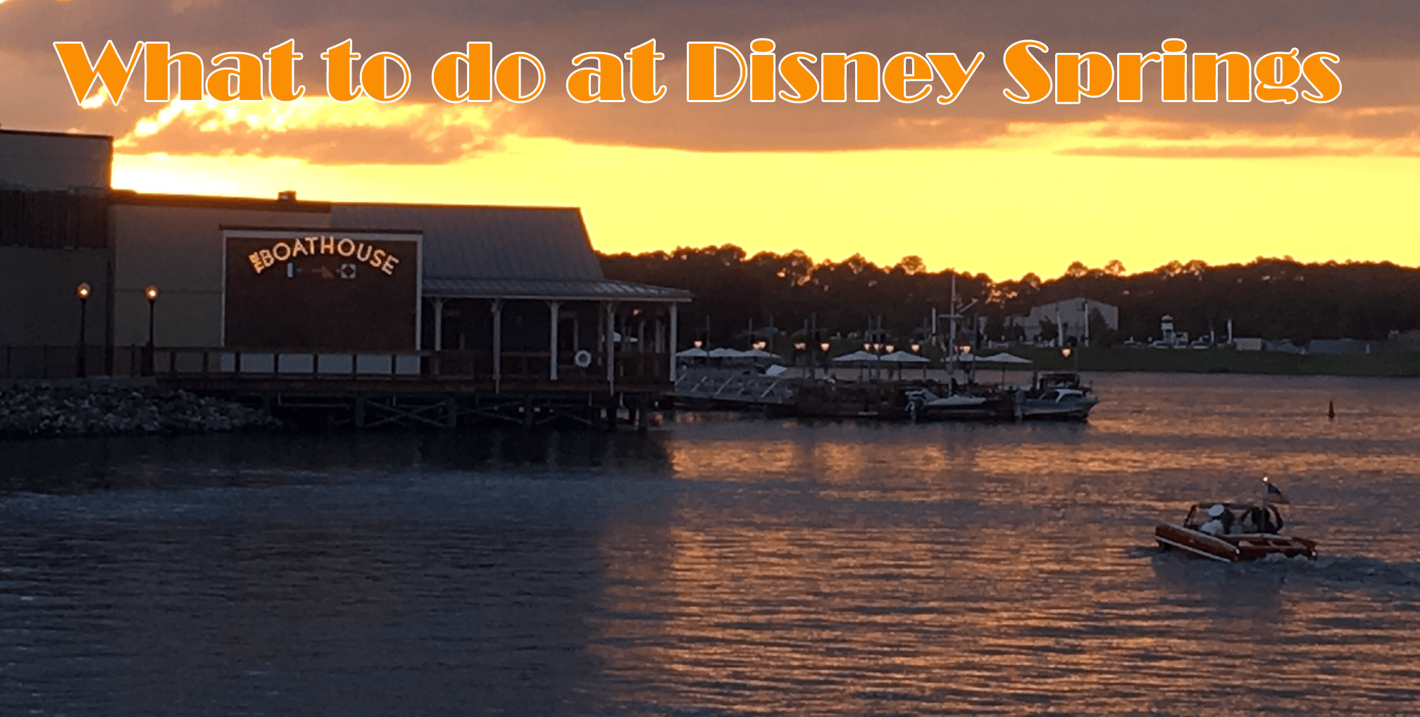 Disney Springs What to do
