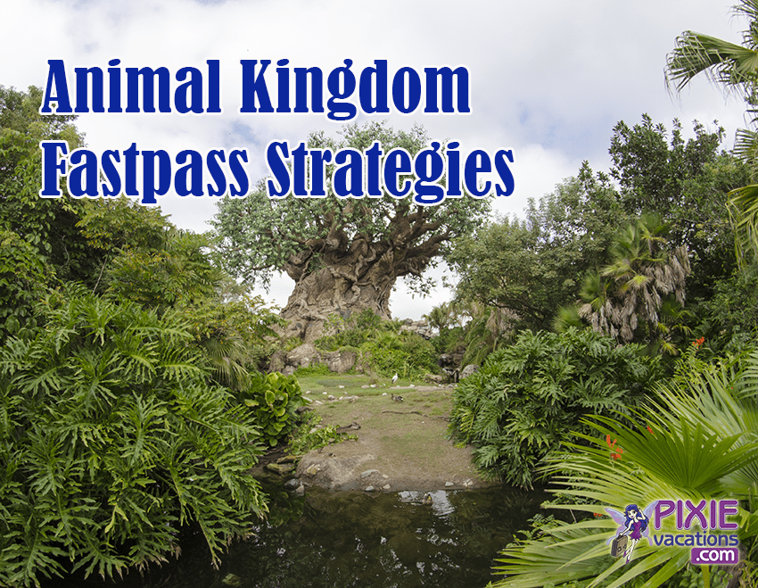 Disney Animal Kingdom Fastpass Strategies