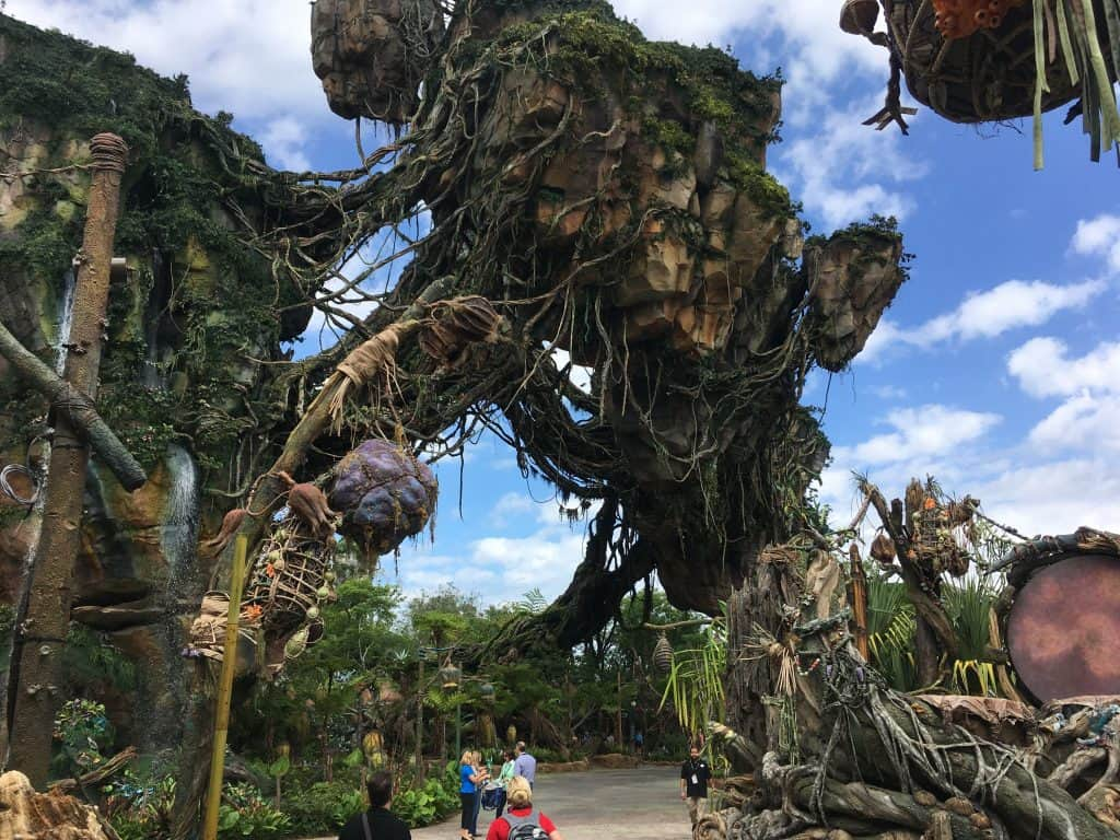 Preview at Disney's Animal Kingdom