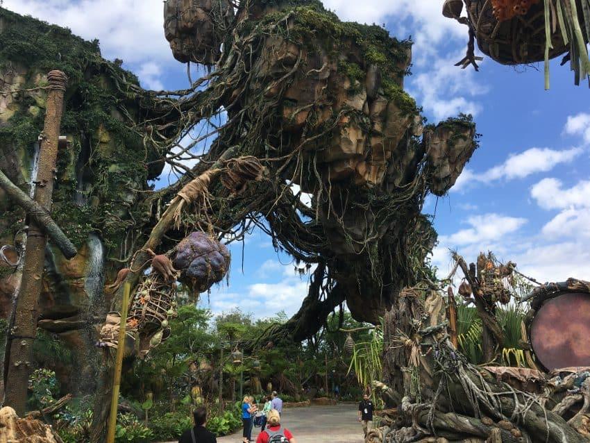 Preview at Disney's Animal Kingdom