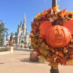 Mickey's Not So Scary Halloween Party – What to do