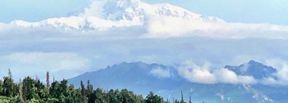 Princess Alaska Cruise In-Depth Review