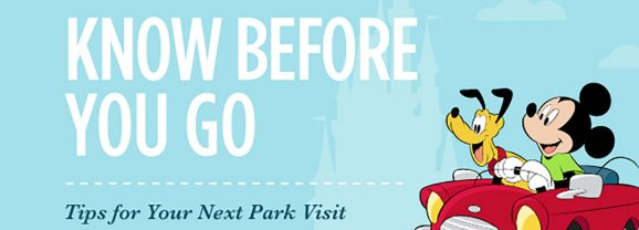 What you need to know Before you go to Walt Disney World